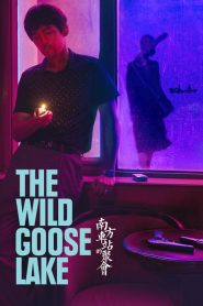The Wild Goose Lake (2019) [Hindi + Eng] HD Movie