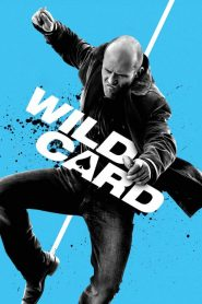 Wild Card (2015) [Hindi + English] HD Movie