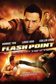 Flash Point (2007) Chinese HD Movie